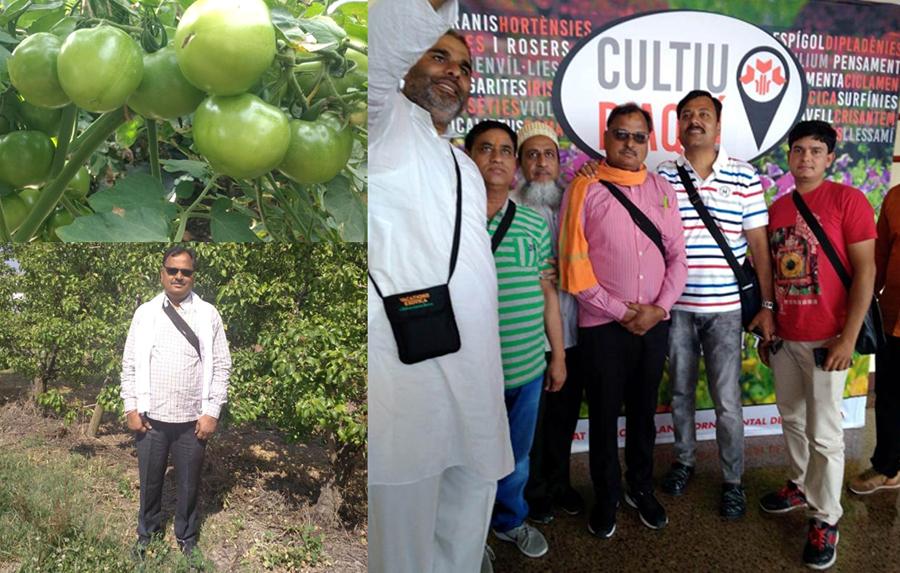 कहानी सच्ची है :- टमाटर की खेती से प्रगतिशील कृषक श्री लखनलाल डोंगरे का बढ़ा आर्थिक स्तर