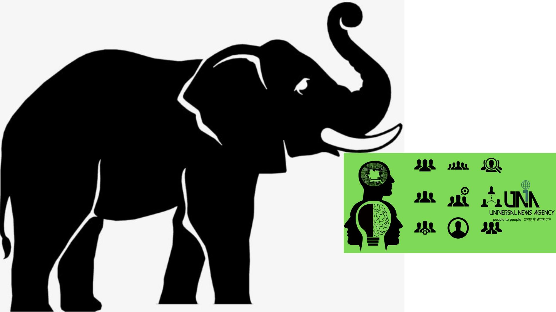 हाथी बने सतर्कता संदेश के वाहक, सतर्कता फैलाने निकला रथ